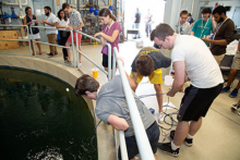Students participating in Unmanned Underwater Vehicle Robotics Competition